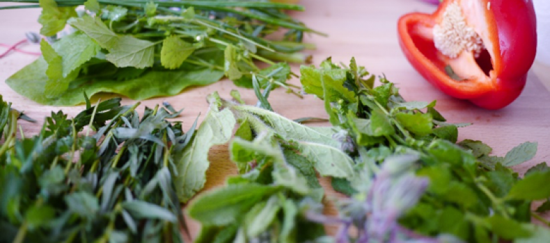 3 WAYS TO MAKE THE MOST OF HOME GROWN HERBS